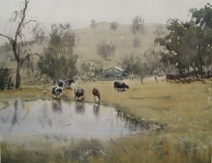 Cows at pond, web